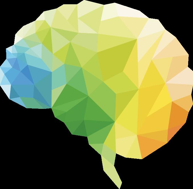 psychologue - neuropsychologue